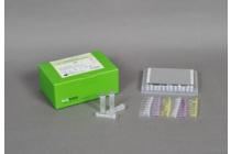 Infectia cu virusul papiloma uman (HPV)   daisysara.ro