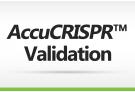 AccuCRISPR™ Validation
