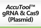 AccuTool™ gRNA & Cas9 (Plasmid)