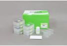 ExiPrep™ 96 Viral DNA/RNA Kit