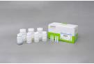 Plant Genomic DNA Extraction Kit, genomic DNA, extraction, prep, sample prep, DNA extraction
