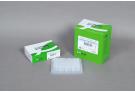 AccuPower® Taq PCR PreMix (96 T, 20 μl)