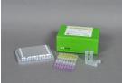 AccuPower® EV Real-Time RT-PCR Kit