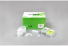 ExiPrep™ 48 Viral DNA/RNA Kit