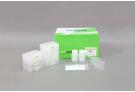 ExiPrep™ 96 Genomic DNA Kit