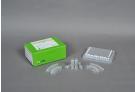 AccuPower® Factor V Leiden Real-Time PCR Kit