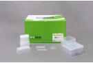 Exiprep™ 48 fast viral RNA Kit