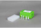 AccuPower® Salmonella spp. 4-Plex PCR Kit