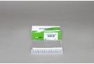 AccuPower®qPCR Array System: Immune qPCR Panel Kit