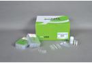 Tissue Genomic DNA extracion Kit for ExiPrep™16 , genomic DNA, extraction, prep, sample prep, DNA extraction, ExiPrep kit