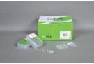 Viral DNA extraction kit for ExiPrep™16 , viral DNA, extraction, prep, sample prep, DNA extraction, ExiPrep kit