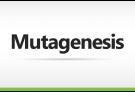 Mutagenesis Custom Order
